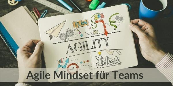 Training für Teams - Agilität