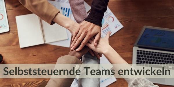 Training für Führungskräfte - Selbssteuernde Teams entwickeln